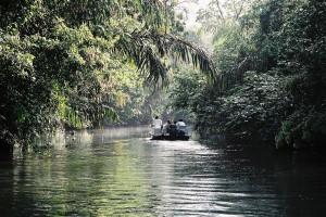Tortuguero, Costa Rica - Boat Trip