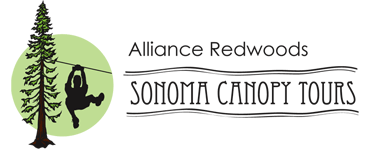 Alliance Redwoods Sonoma Canopy Tours - Zipline